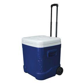 ice-cube-60-roller